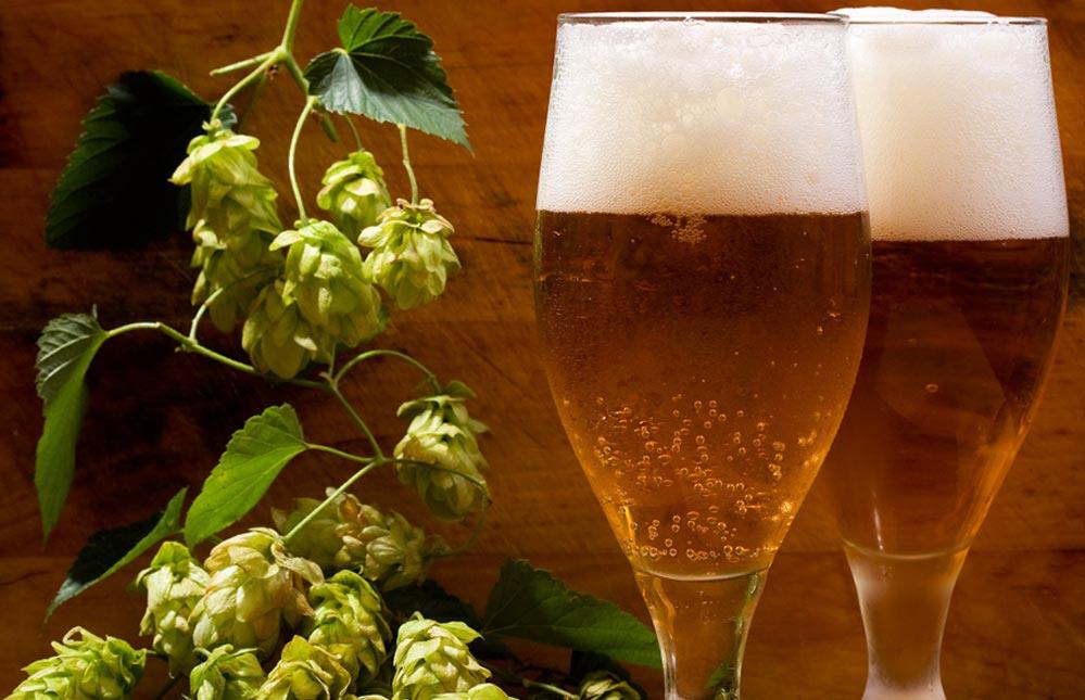 Pití piva snižuje řadu zdravotních rizik, ale v rozumné míře
