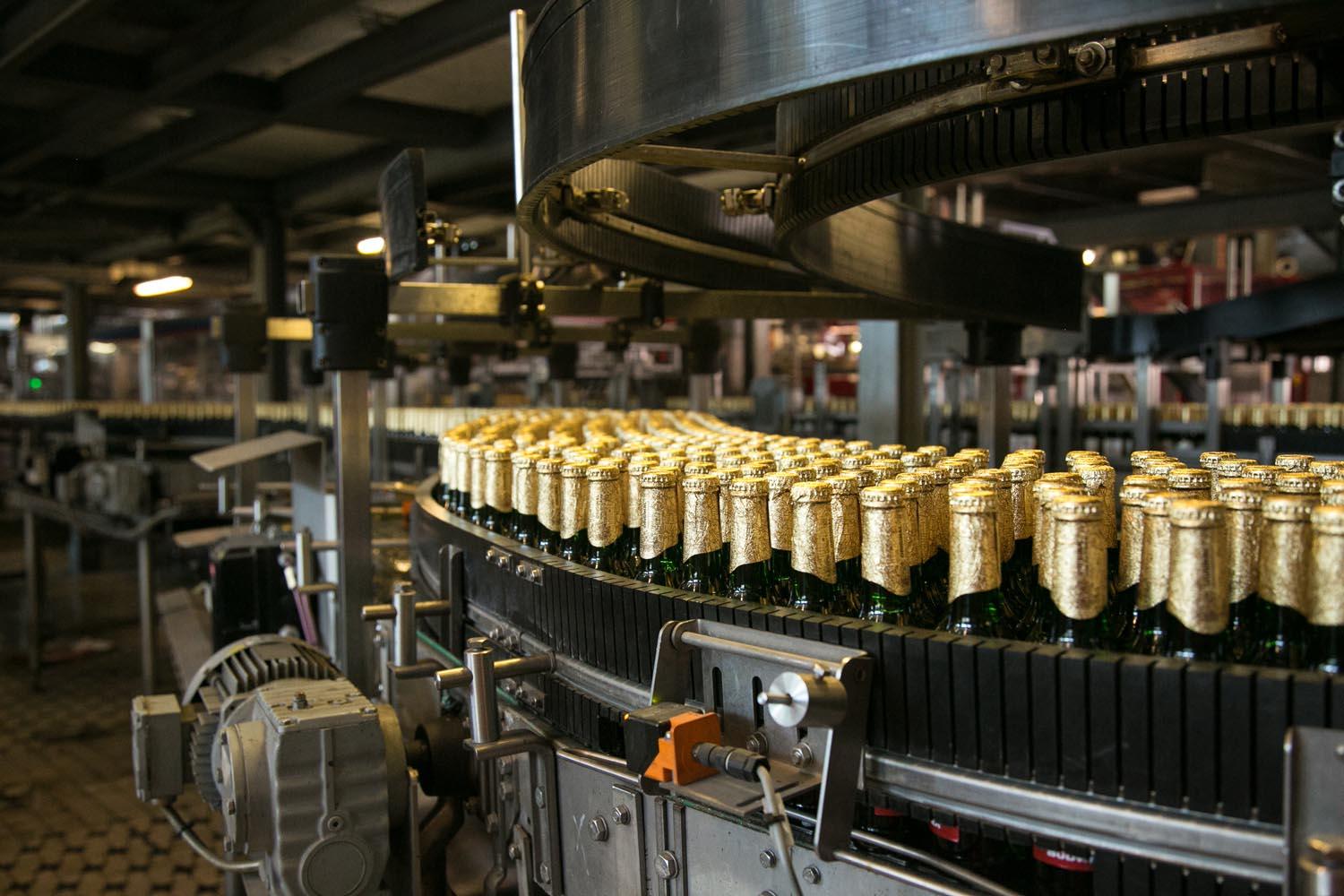 Budvar zvládl koronavirovou krizi poměrně dobře, míní šéf pivovaru Dvořák