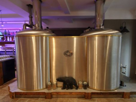 Pivovar U Černého medvěda