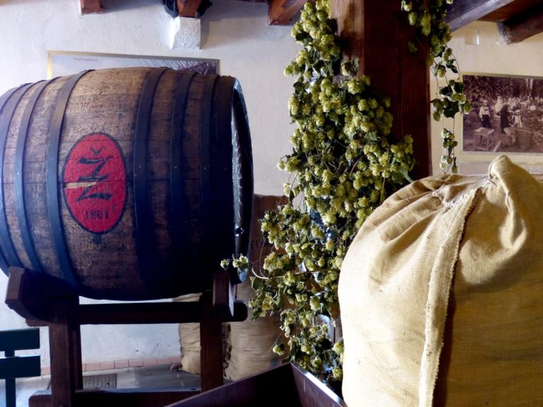 Co je to žatecká drátěnka a jak chutná místní pivo, zjistíte v Chmelařském muzeu