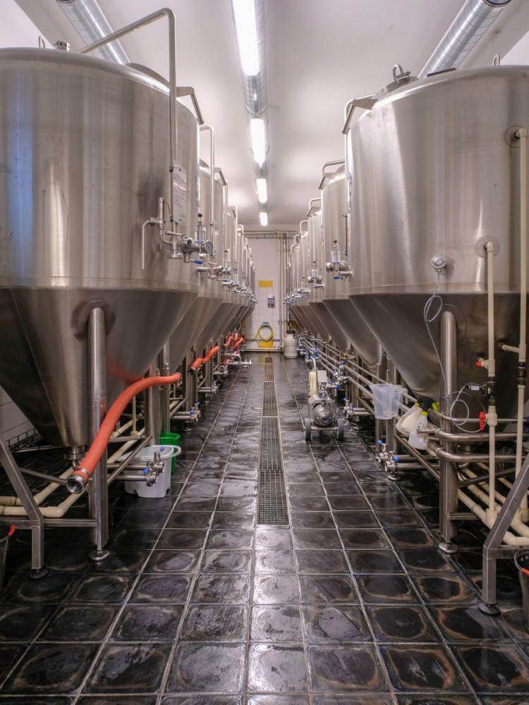 pivovari-pivovary-novinky-nas-nazev-je-velka-prednost-rika-sladek-pivovaru-nachmelena-opice-michal-kurec-03