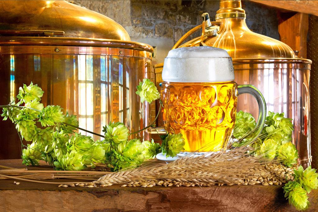 pivovari-pivovary-novinky-ilustracni-pivo-varna