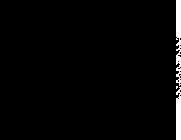 pivovar-vik-logo